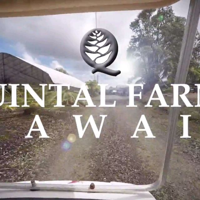 Quintal Farms, Inc. Promotional Video